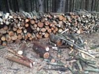 Palivové dřevo :  Bílá Voda, dřevo na topení Bílá Voda, štípané dřevo Bílá Voda