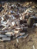 Palivové dřevo :  Javorník, dřevo na topení Javorník, štípané dřevo Javorník