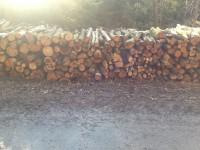 Palivové dřevo :  Bohutín, dřevo na topení Bohutín, štípané dřevo Bohutín