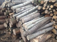 Palivové dřevo :  Branná, dřevo na topení Branná, štípané dřevo Branná