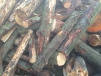 Palivové dřevo :  Dubicko, dřevo na topení Dubicko, štípané dřevo Dubicko