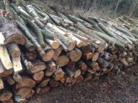 Palivové dřevo :  Hoštejn, dřevo na topení Hoštejn, štípané dřevo Hoštejn