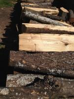 Palivové dřevo :  Písařov, dřevo na topení Písařov, štípané dřevo Písařov