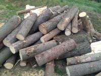 Palivové dřevo :  Police, dřevo na topení Police, štípané dřevo Police