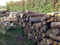 Palivé dřevo  Čechy pod Kosířem, dřevo na topení Čechy pod Kosířem, štípané dřevo Čechy pod Kosířem