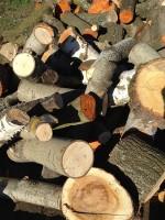Palivé dřevo  Čelechovice na Hané, dřevo na topení Čelechovice na Hané, štípané dřevo Čelechovice na Hané