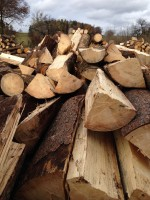 Palivé dřevo  Hruška, dřevo na topení Hruška, štípané dřevo Hruška