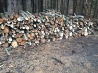 Palivé dřevo  Jesenec, dřevo na topení Jesenec, štípané dřevo Jesenec