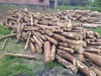 Palivé dřevo  Kralice na Hané, dřevo na topení Kralice na Hané, štípané dřevo Kralice na Hané