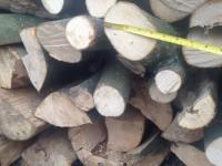 Palivé dřevo  Laškov, dřevo na topení Laškov, štípané dřevo Laškov