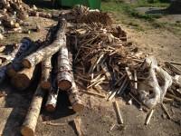 Palivé dřevo  Lešany, dřevo na topení Lešany, štípané dřevo Lešany