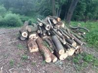 Palivové dřevo Ptení, dřevo na topení Ptení, štípané dřevo Ptení