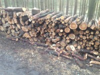Palivové dřevo :  Rakůvka, dřevo na topení Rakůvka, štípané dřevo Rakůvka