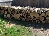 Palivové dřevo :  Smržice, dřevo na topení Smržice, štípané dřevo Smržice