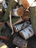 Palivové dřevo :  Určice, dřevo na topení Určice, štípané dřevo Určice
