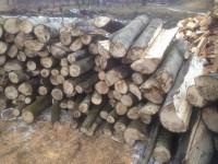 Palivové dřevo :  Vřesovice, dřevo na topení Vřesovice, štípané dřevo Vřesovice