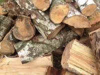 Palivové dřevo :  Buk, dřevo na topení Buk, štípané dřevo Buk