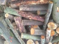 Palivové dřevo :  Čechy, dřevo na topení Čechy, štípané dřevo Čechy