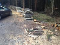 Palivové dřevo :  Dolní Těšice, dřevo na topení Dolní Těšice, štípané dřevo Dolní Těšice