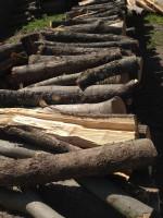 Palivové dřevo : Hrabůvka, dřevo na topení  Hrabůvka, štípané dřevo  Hrabůvka