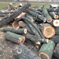 Palivové dřevo : Klokočí dřevo na topení  Klokočí, štípané dřevo  Klokočí