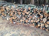 Palivé dřevo  Lipník nad Bečvou, dřevo na topení Lipník nad Bečvou, štípané dřevo Lipník nad Bečvou