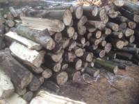 Palivé dřevo  Oldřichov, dřevo na topení Oldřichov, štípané dřevo Oldřichov