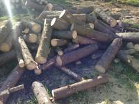 Palivé dřevo  Radíkov, dřevo na topení Radíkov, štípané dřevo Radíkov