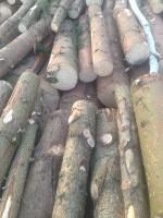 Palivé dřevo  Soběchleby, dřevo na topení Soběchleby, štípané dřevo Soběchleby