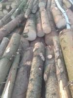 Palivé dřevo  Tučín, dřevo na topení Tučín, štípané dřevo Tučín