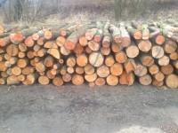 Palivé dřevo  Bohuňovice, dřevo na topení Bohuňovice, štípané dřevo  Bohuňovice