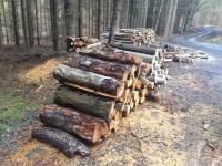Palivé dřevo  Bukovany, dřevo na topení Bukovany, štípané dřevo  Bukovany