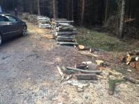 Palivé dřevo  Domašov nad Bystřicí, dřevo na topení Domašov nad Bystřicí, štípané dřevo  Domašov nad Bystřicí