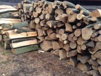 Palivové dřevo :  Drahanovice, dřevo na topení Drahanovice, štípané dřevo Drahanovice