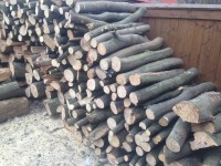Palivové dřevo :  Dubčany, dřevo na topení Dubčany, štípané dřevo Dubčany