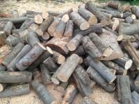 Palivové dřevo :  Charváty, dřevo na topení Charváty, štípané dřevo Charváty