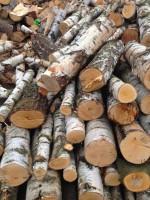Palivové dřevo :  Kožušany-Tážaly, dřevo na topení Kožušany-Tážaly, štípané dřevo Kožušany-Tážaly