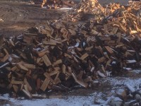 Palivé dřevo  :  Luběnice, dřevo na topení Luběnice, štípané dřevo Luběnice