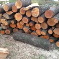 Palivé dřevo  :  Mrsklesy, dřevo na topení Mrsklesy, štípané dřevo Mrsklesy