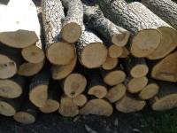 Palivé dřevo  :  Norberčany, dřevo na topení Norberčany, štípané dřevo Norberčany