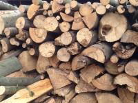 Palivé dřevo  :  Senice na Hané, dřevo na topení Senice na Hané, štípané dřevo Senice na Hané