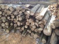 Palivé dřevo  :  Slatinice, dřevo na topení Slatinice, štípané dřevo Slatinice