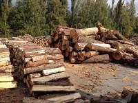 Palivé dřevo  Žerotín, dřevo na topení Žerotín, štípané dřevo Žerotín