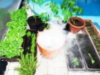 Zvlhčovač pro skleníky a fóliovníky.