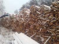 Palivové dřevo Šumperk - palivové dříví šumperk
