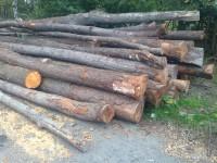 Nejlevnější palivové dřevo Olomouc