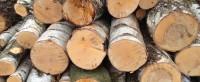 dřevo na topení ostrava